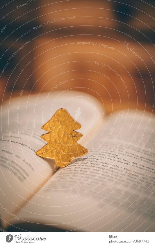Small golden fir tree stands on an open book. Christmas. Book Christmas story Reading christmas tree Christmas & Advent Literature Christmas tree