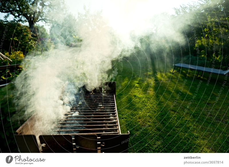 Grill with smoke Burn Relaxation holidays Fire Garden Grass Barbecue (apparatus) BBQ Sky allotment Garden allotments Deserted Nature Lawn Smoke tranquillity