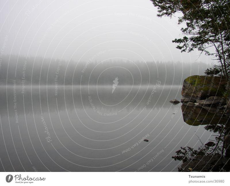 Lake Coast Fog Sweden