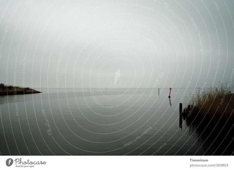 Orientation in the water. Ocean Environment Nature Water Sky Clouds Bad weather Plant Coast North Sea Denmark Deserted Pole Sign Signs and labeling Looking