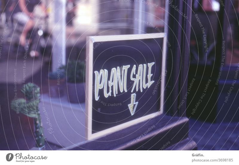 Plant purchase for plant freaks Signs and labeling Characters Blackboard Window Shopping SHOPPING Signage sale Store premises Deserted Colour photo