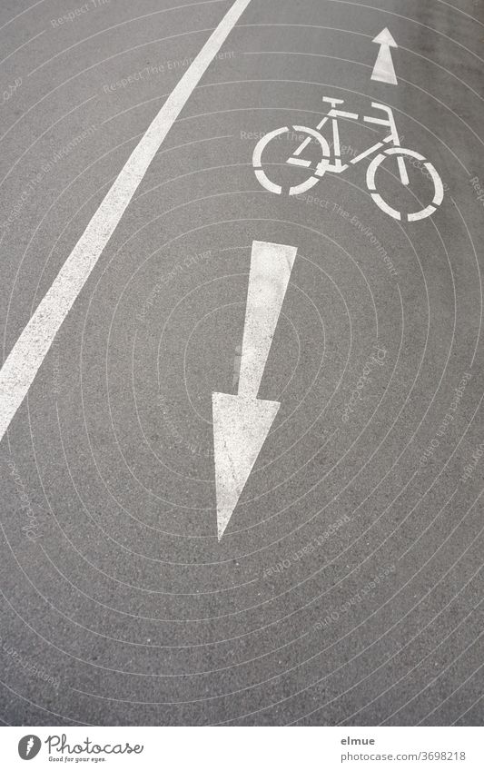 On the grey, asphalt cycle path next to the road, white pictograms of one wheel and two arrows indicate to the cyclist that he/she must expect oncoming traffic