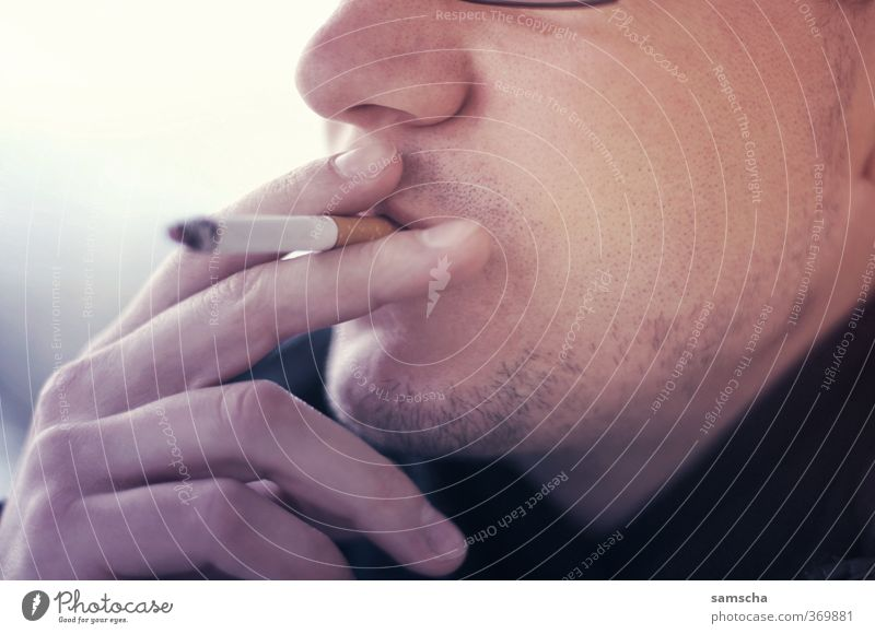 Human being Man Youth (Young adults) Adults Face Young man Life 18 - 30 years Head Masculine Fingers To enjoy Smoking Smoke Cigarette Addiction