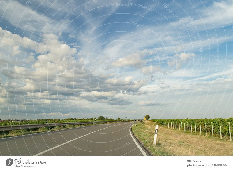 on the way in the Palatinate Street no passing palatinate Clouds Sky Curve Roadside vines Crash barrier Wide angle Driving Transport Motoring In transit travel
