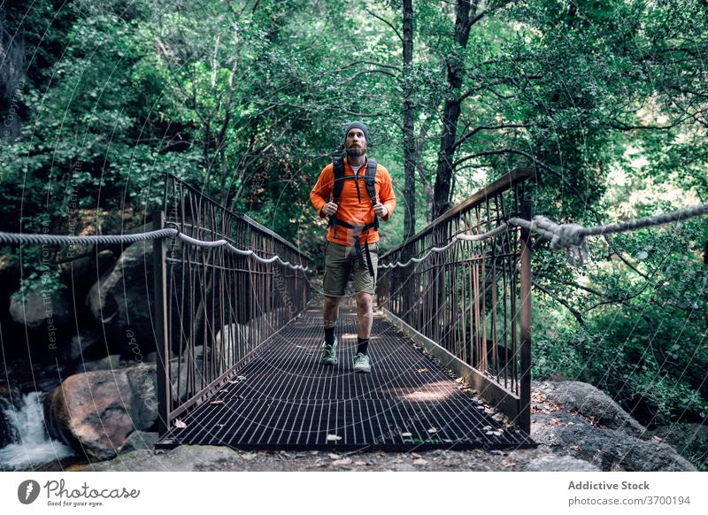 Traveling man on bridge in forest traveler vacation admire suspension carefree beard wanderlust male adventure amazing nature woods trekking hike holiday