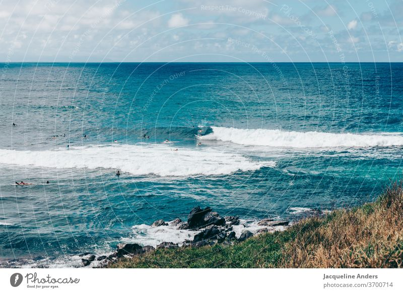 Surfers in Maui wait for the next wave in the sea Ocean Water Blue Landscape Waves Surfboard Coast Sports Lifestyle Gorgeous Surfing Hawaii Adventure Summer