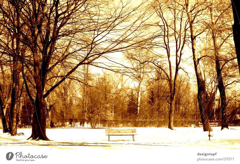 aare island Winter Aarau Aare Snow color effect