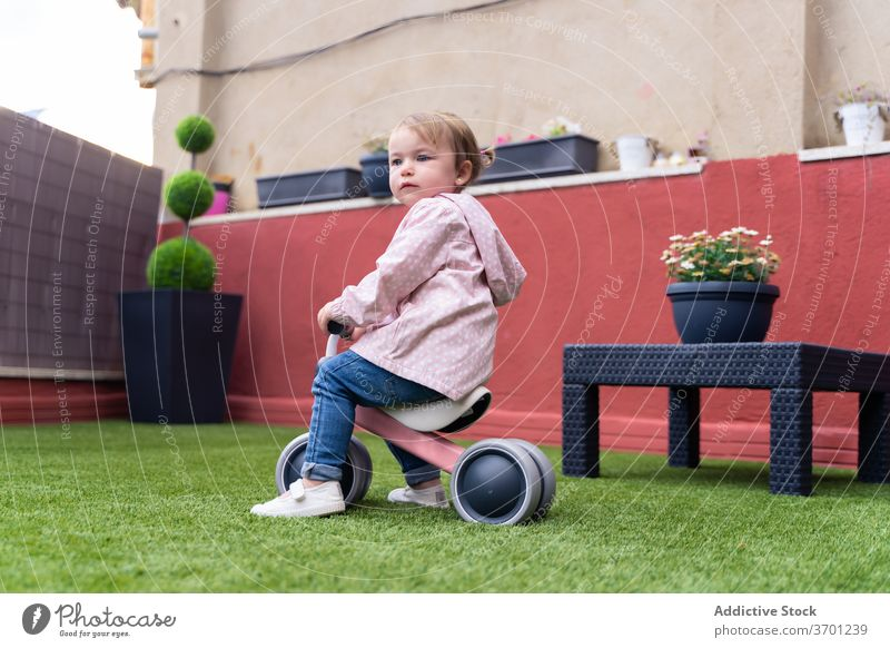 Little girl riding toy bicycle on street kid ride toddler summer activity yard bike grass cute child lifestyle childhood little run bike balance bike play