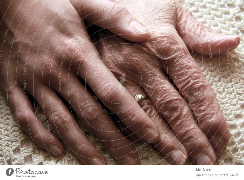 Opposites I Old and young hands by hand Fingers Trust youthful Touch Emotions Skin Life Wisdom Wrinkle Age Warmth Authentic Joie de vivre (Vitality) Safety
