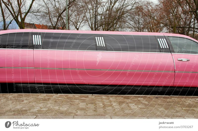 pink stretch limo Car Stretch Limousine Decadence Luxury Sidewalk Pink bare trees Long us car Design Car body Status symbol Elongated comfort detail Window pane
