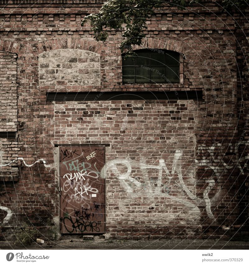 Berlin Wedding Youth culture Subculture Graffiti House (Residential Structure) Wall (barrier) Wall (building) Facade Window Door Brick Dark Rebellious Trashy