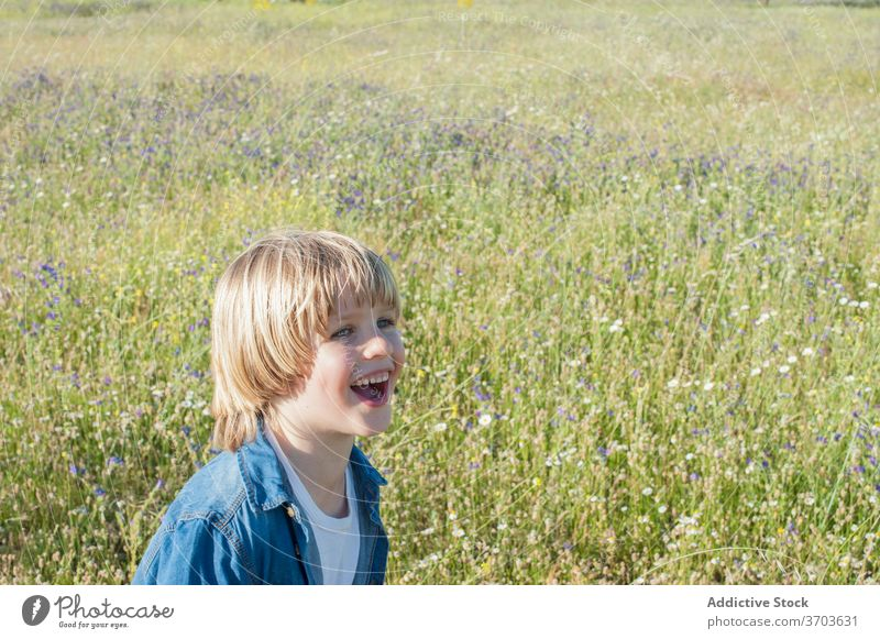 Carefree boy in blooming meadow child carefree laugh relax cute summer sunny adorable cheerful joy field kid flower happy blossom nature grass rest enjoy