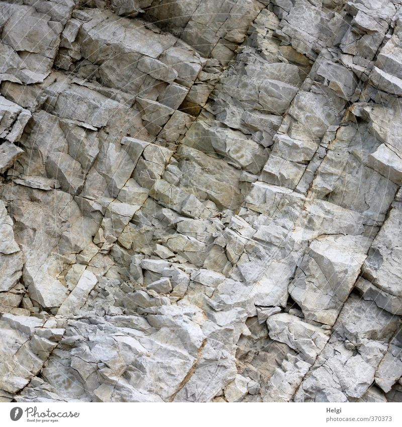 AST6 Inntal Prehistoric Rock... Environment Nature Alps Old Authentic Exceptional Sharp-edged Simple Uniqueness Natural Brown Gray Calm Unwavering Dangerous