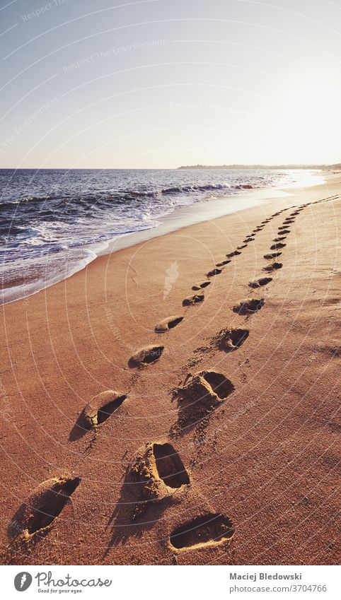 Footprints on a tropical beach at sunset. nature footprint romantic sea wave water ocean summer travel vacation sky getaway island sand Sri Lanka coast holiday