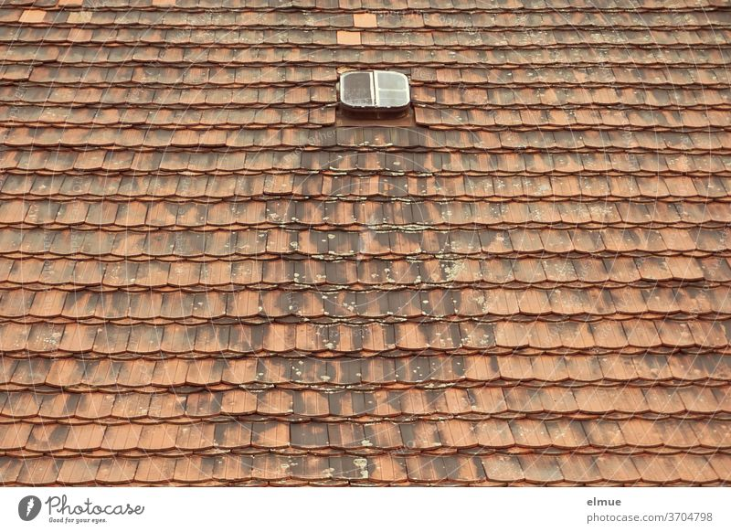 The small roof window seemed to be lost and useless for a long time between the many red and meanwhile also weathered beavertail tiles Roofing tile plain tile