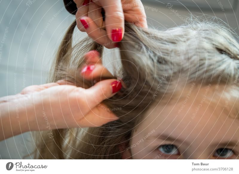Hands of a woman braiding hair of a girl Women's Hands trafficking in women Lichen Hair and hairstyles braid hair french plait Long-haired Head Feminine already