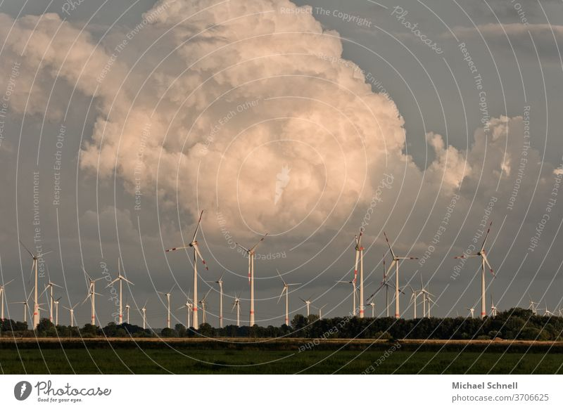 Wind farm in front of towering clouds Wind energy plant Pinwheel wind farm windmills Clouds Energy Energy industry vigorous Nature ecology stream
