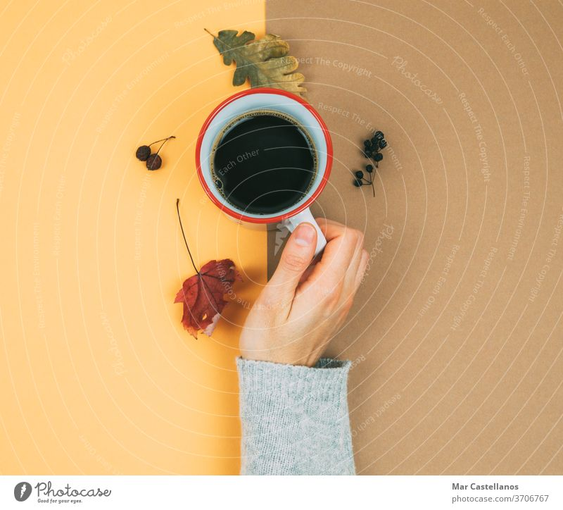 A woman's hand with a cup of coffee and dried leaves. dry autumn hot dry leaves warm background cream color nails finger sweater seasonal vintage home winter