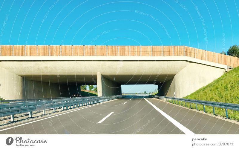 freie fahrt Straße Schnellstraße Tunnel neu B31 Bodensee Bodenseeregion Friedrichshafen Autostraße fahren Umgehungsstraße