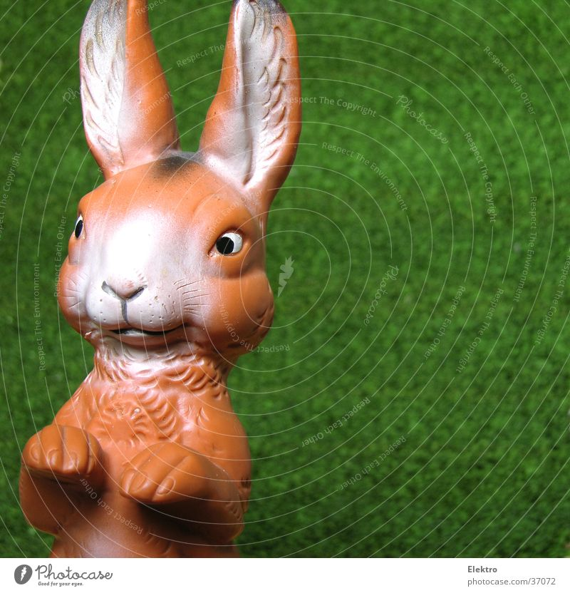 Easter bunny Doll Hare & Rabbit & Bunny Rubber Artificial lawn Scaredy-cat Yolk Toys Ear Joy Spring Easter Bunny long ears rabbit tail spick and span rammer Egg
