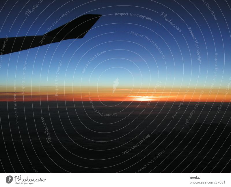 FLIGHT SUNSET. Airplane Sunset Clouds Cloud cover Aviation Sky Wing Blue Blue sky