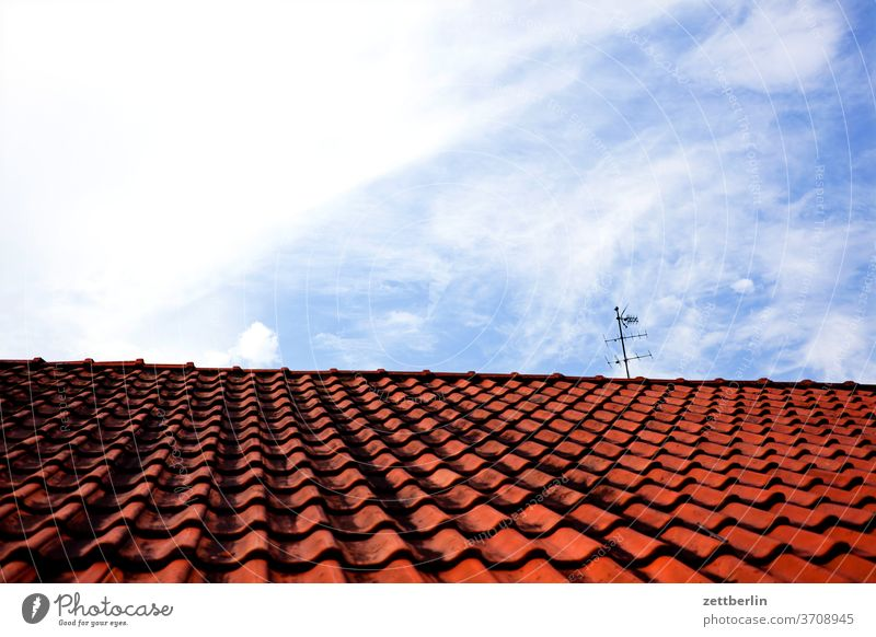Roof with antenna Old Old town Ancient Architecture History of the museum North Rhine-Westphalia soest Town Street Roofing tile Tiled roof first Roof ridge