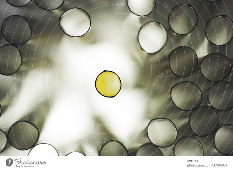 The other - The black framed yellow circle stands alone against a bright background and is surrounded by many tubes filled with grey light Ring Exclusion Circle