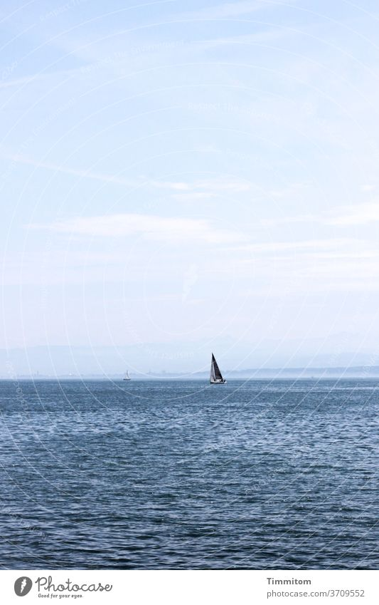 Wide and free travel Lake Constance Water wide boat Sail Sailboat Waves Sailing Sky Vacation & Travel Horizon Day Colour photo Wind