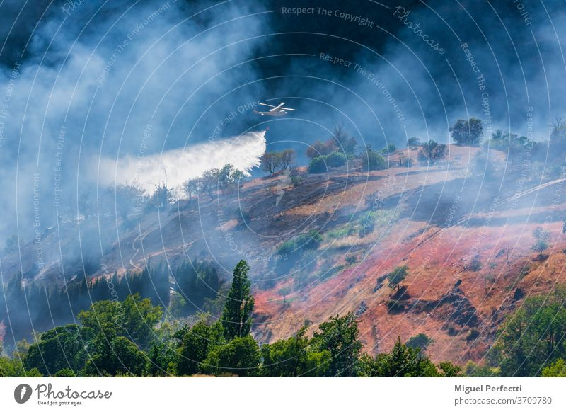 Helicopter discharging water into a mountain fire helicopter firefighting smoke extinguish forest mountains nature trees landscape blue summer view panorama