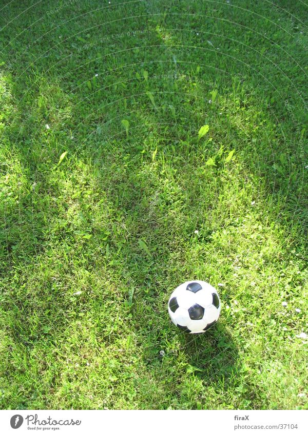 Meadow with football Grass Green Black Sports Soccer Ball wise Shadow