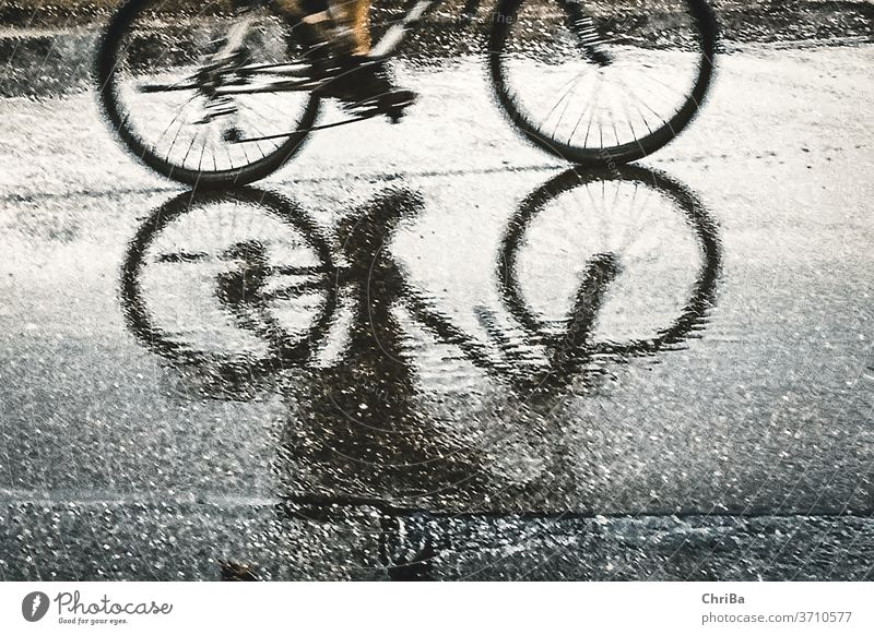 Cyclists shadowy as reflection on the asphalt in the rain Bicycle Cycling Street Transport Exterior shot Lanes & trails Road traffic Mobility Movement