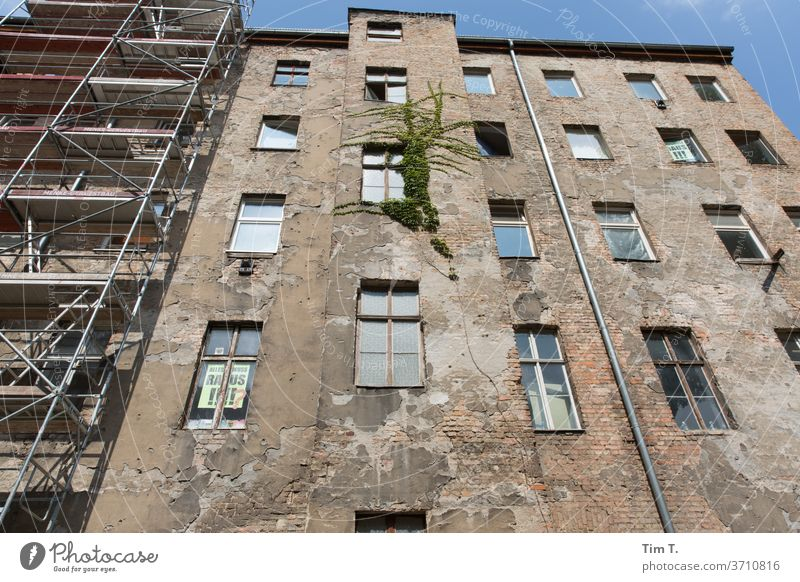 Backyard Berlin Prenzlauer Berg Town Downtown Capital city Old town Exterior shot Deserted House (Residential Structure) Day Old building Window