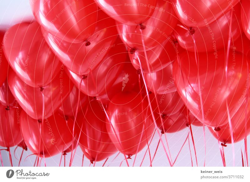 Heart-shaped balloons in red filled with helium Balloon Helium Balloons Red red balloons Colour Colour photo Joy luck Feasts & Celebrations