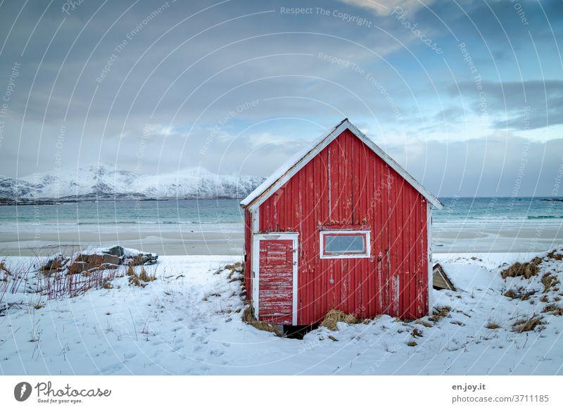 Red cabin on the beach in Lofoten hut Barn Beach Snow Winter Ocean Lofotes Norway Scandinavia Wooden hut Mountain Horizon Vacation & Travel Coast chill Fjord