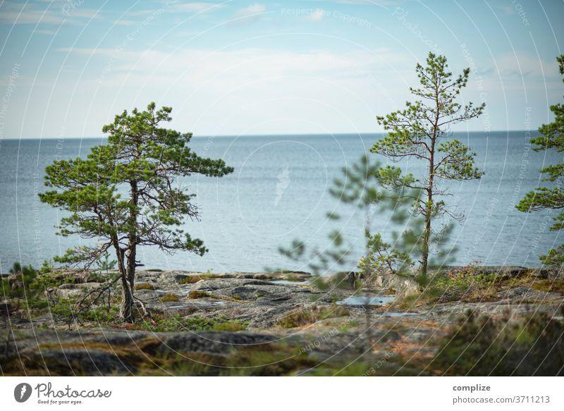 Ostrobothnia Finland Ocean Coast Beach rocky coast Rock Jawbone wide Scandinavia Baltic Sea Baltic coast Pietarsaari Horizon