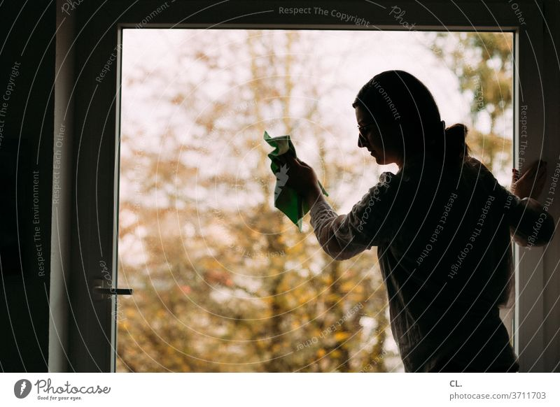Cleaning windows Window Woman Household polish at home neat Flat (apartment) Living or residing Housekeeping Window pane clean windows Cleanliness Interior shot