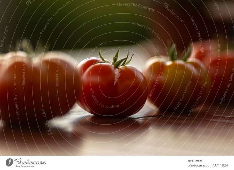 Harvesting tomatoes in a row Table Row Food Tasty Red Fresh Healthy Nutrition Vegetable Close-up Delicious Vegetarian diet Healthy Eating Organic produce
