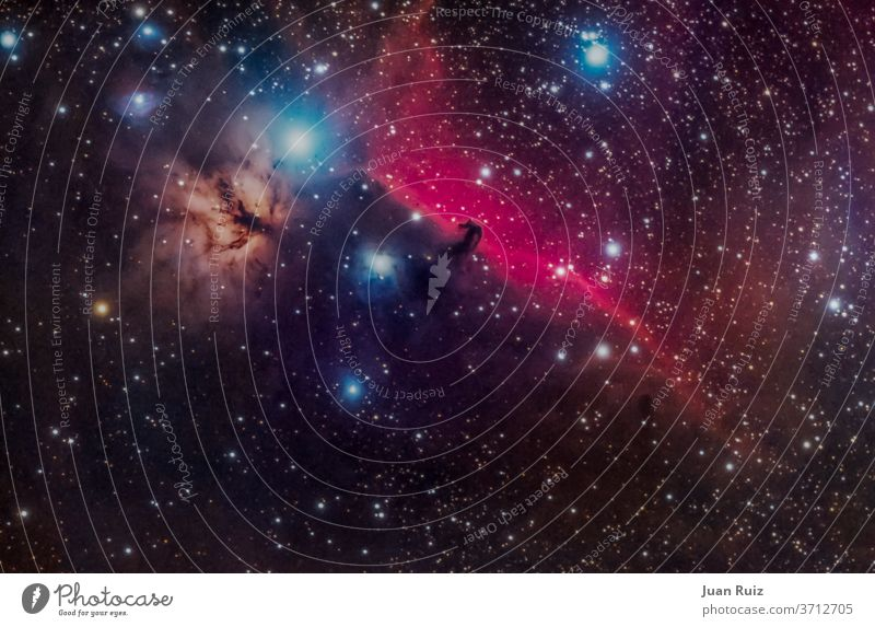 horse head nebula un Orión constellations galaxy astronomy sky star space night creation cosmos way explosion orion blue telescope starry nebular light dark