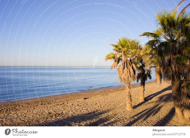 Marbella Beach on Costa del Sol in Spain beach marbella costa sol andalusia andalucia spain sandy coast coastline seashore mediterranean seaside coastal water