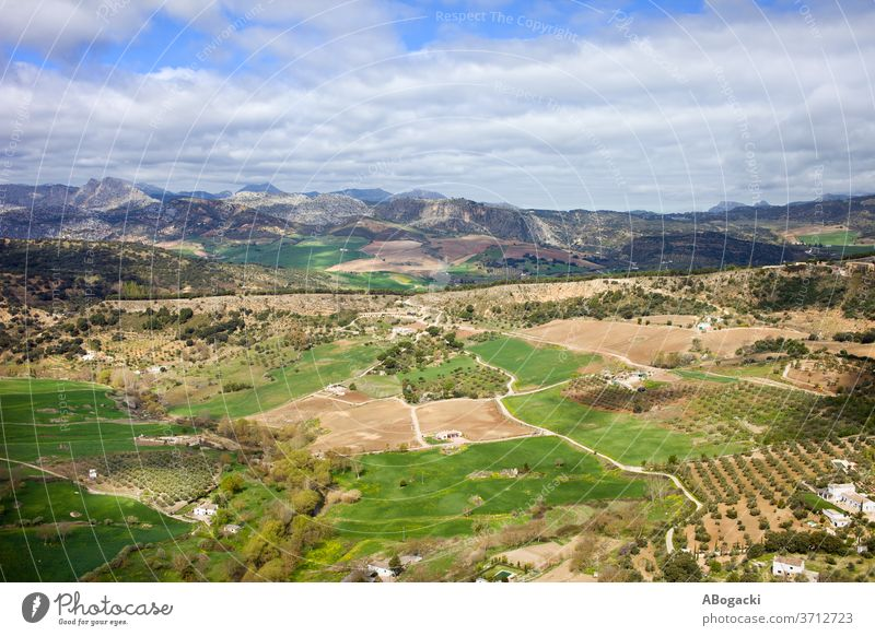 Andalusia Landscape in Spain andalucia andalusia landscape spain field country countryside rural nature outdoor meadow scenery europe green grassland farm