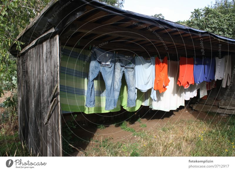 Coloured clothesline in a garden shed Clothesline Laundry Household Washing Housekeeping Dry Clean Hang up Living or residing Clothing Washing day