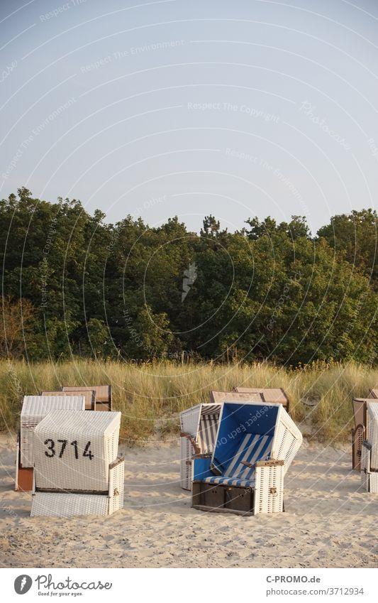 We meet at Strandkorb 3714 beach chair Sunbathing dune Beach Beach dune Sky Cloudless sky