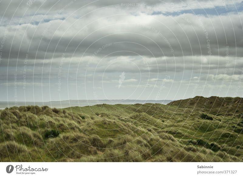 balmedie Environment Nature Landscape Elements Sky Clouds Plant Grass Bushes Moss Wild plant Hill Coast Bay North Sea Aberdeen Scotland Deserted Green