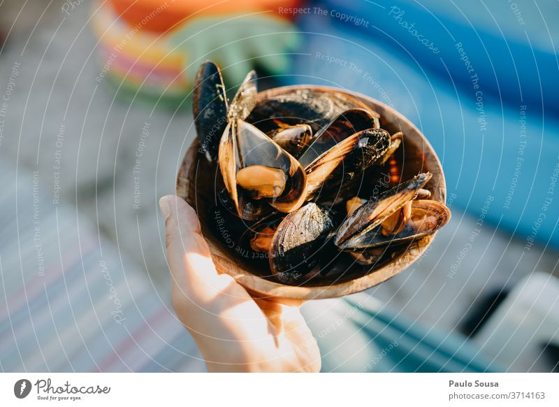 Close up bowl with mussels Mussel Mussel shell Food Bowl Detail Ocean Snail shell Exterior shot Colour photo Day Beach Deserted Nature Close-up