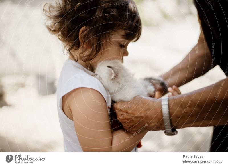 Child holding little cat Cat Domestic cat Grandmother grandma Animal portrait Cat eyes Mammal Pet Whisker Colour photo Beautiful Cute Family & Relations family