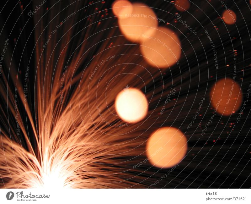 White Black Lamp Dark Movement Speed Sewing thread Photographic technology