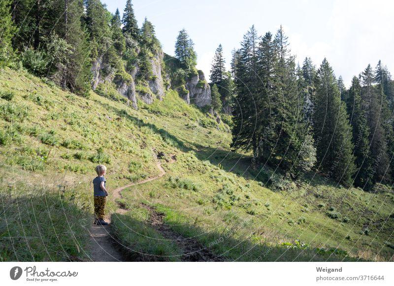 Child hiking Hiking Boy (child) Mountain allgau Alps Nature Landscape Colour photo Exterior shot Vacation & Travel Mountaineering Rock Summer Climbing Adventure