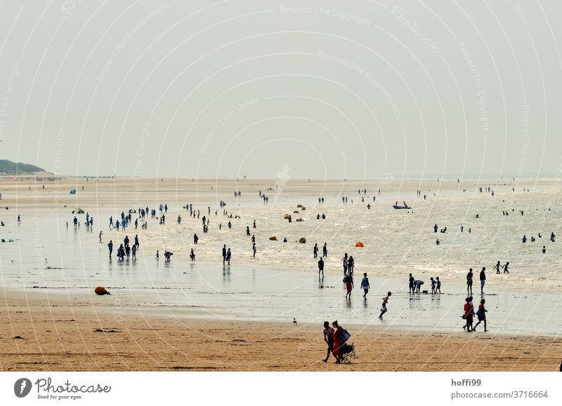 lido on the beach in the evening Beach Ocean Coast Summer Landscape Wet Water Vacation & Travel Relaxation ebb and flow Sunlight Silhouette Sand Relationship