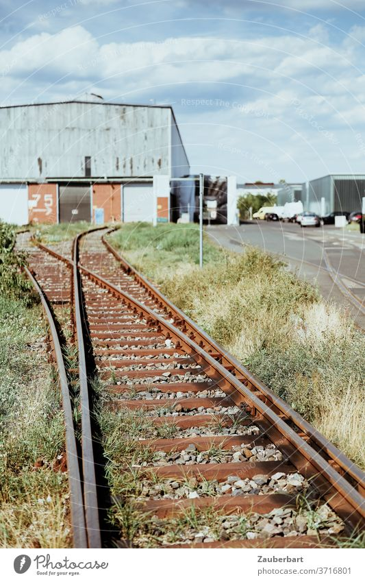 Tracks of a factory railway with points in front of a factory building track Railroad Railway track Switch industrial railway Factory Factory hall Warehouse Old