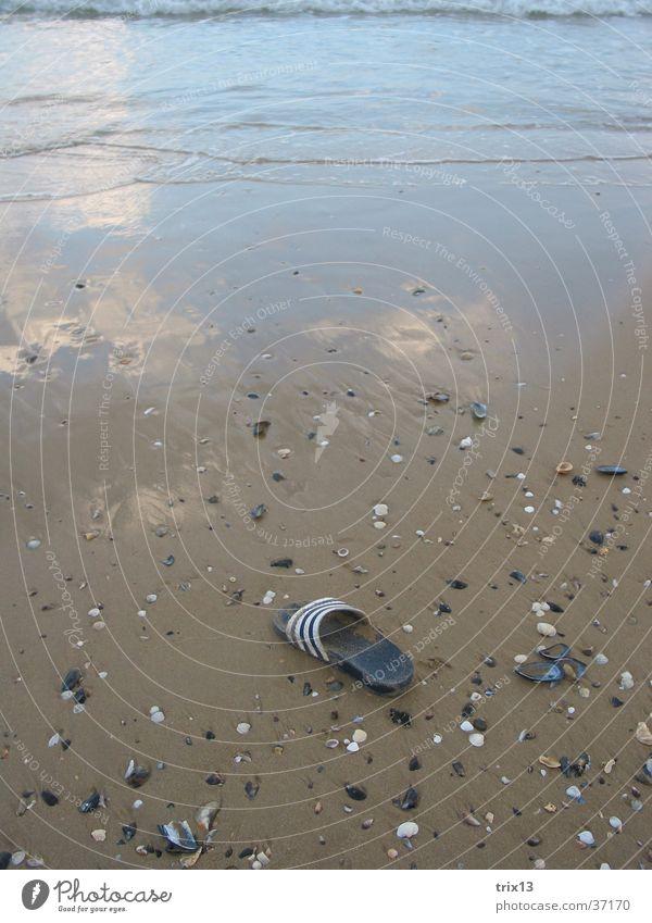 Water Ocean Beach Vacation & Travel Sand Footwear Coast Wet Europe Mussel Black Sea